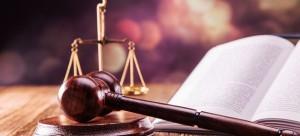 Лишение родительских прав: процедура, основания, порядок действий, законы